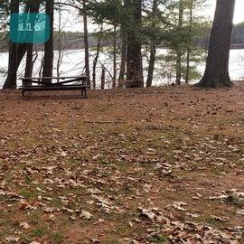 Lake Dennison Site 116