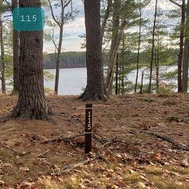 Lake Dennison Site 115