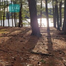 Lake Dennison Site 114