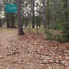 Lake Dennison Site 129