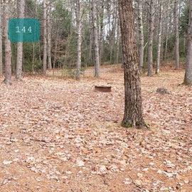 Lake Dennison Site 144