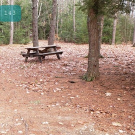 Lake Dennison Site 143