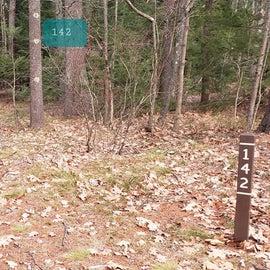Lake Dennison Site 142