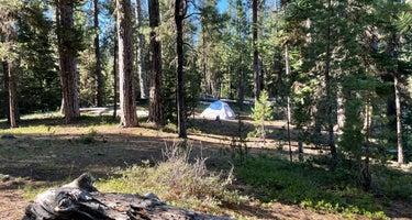 Little Cultus Campground