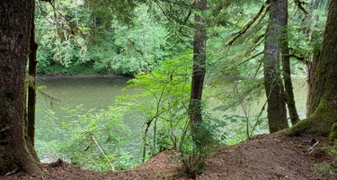 Dawleys Sol Duc River Campground