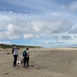unpopulated beach area