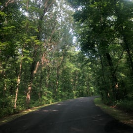 Drive to the campsites