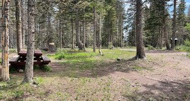 Upper Lagunitas Campground