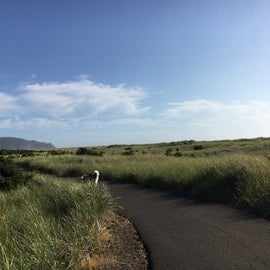 There's a great walking trail in Long Beach