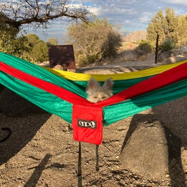 Had to find a spot that we could hang the hammock up in