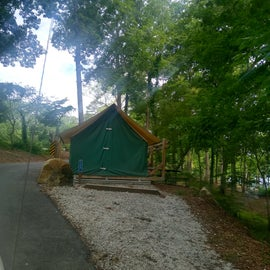 premium tent rental