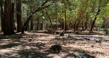 Pogie Point Campground