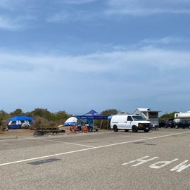 typical sites for tents & RVs