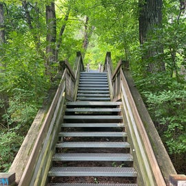 stairs up to the trails and great restaurant