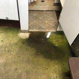 Restroom Shower Area