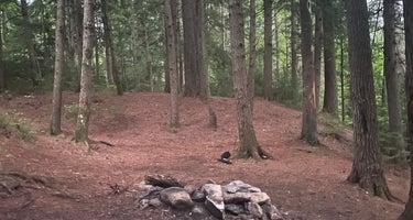 Fox Lair Campsites
