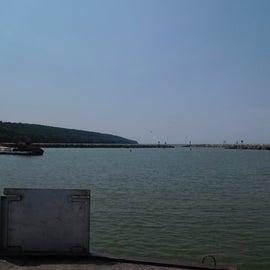 Lake near pet swim