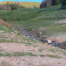 feeder stream