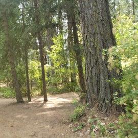Benewah Campground,  Heyburn SP