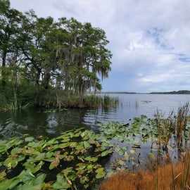 View of Lake Harris from the end of the wet-dock slips.