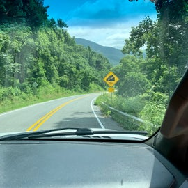 drive to Sherando Lake was steep!
