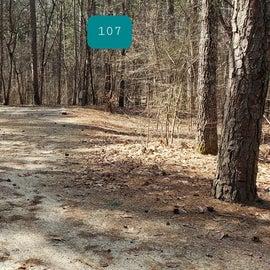 Pocomoke River Shad Landing Site 107
