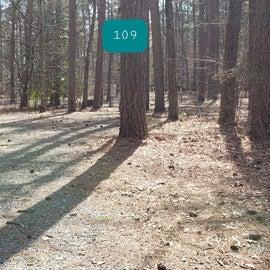 Pocomoke River Shad Landing Site 109