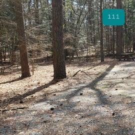 Pocomoke River Shad Landing Site 111