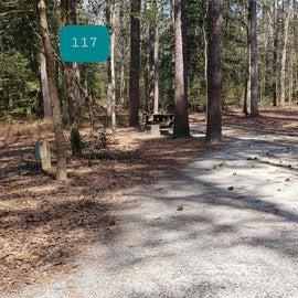 Pocomoke River Shad Landing Site 117