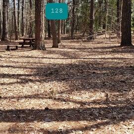 Pocomoke River Shad Landing Site 128