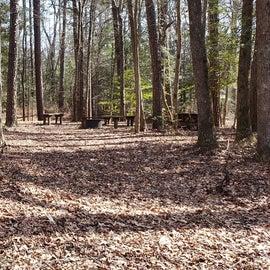 Pocomoke River Shad Landing Group Site Laurel