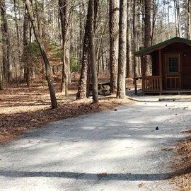 Pocomoke River Shad Landing Site 179 mini cabin