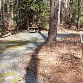 Pocomoke River Shad Landing Site 182