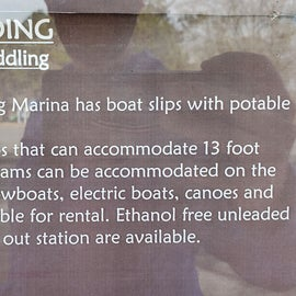 Pocomoke River Shad Landing Boat rentals available