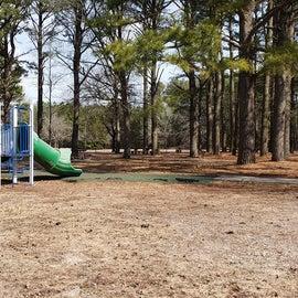 Pocomoke River Shad Landing playground