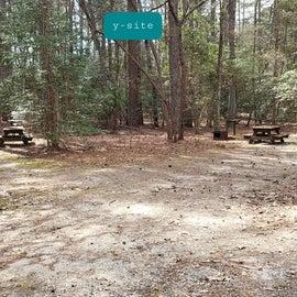 Pocomoke River Shad Landing Site  43 & 42 Y site