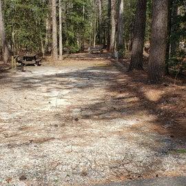 Pocomoke River Shad Landing Site 92