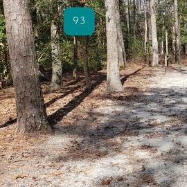 Pocomoke River Shad Landing Site 93