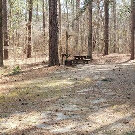 Pocomoke River Shad Landing Site 103