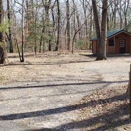 Martinak State Park Fir cabin