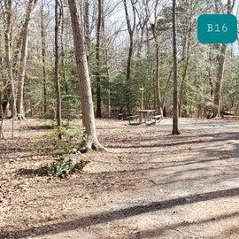 Martinak State Park Site B16