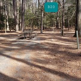 Martinak State Park Site B20