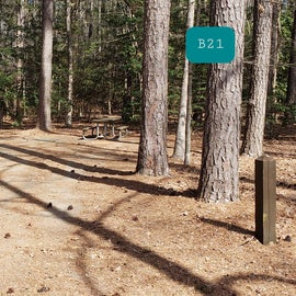 Martinak State Park Site B21