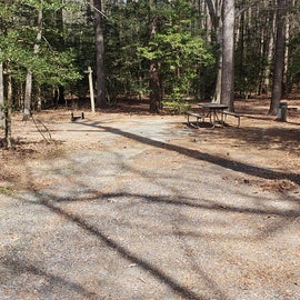 Martinak State Park Site B22