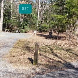 Martinak State Park Site B27