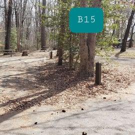 Martinak State Park Site B15