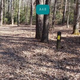 Martinak State Park Site A48