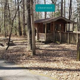 Martinak State Park Site Chestnut cabin