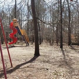 Martinak State Park Site Playground