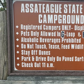 Assateague State Park Campground rules